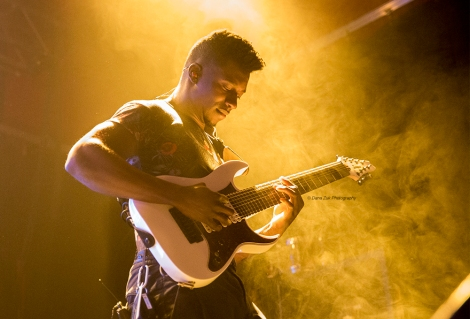 ANIMALS AS LEADERS_2